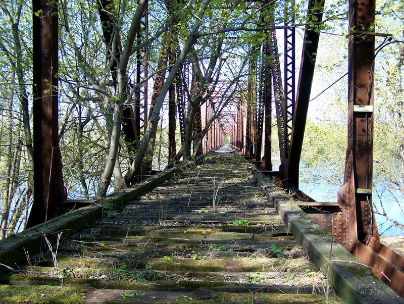 Overgrown railroad trestle