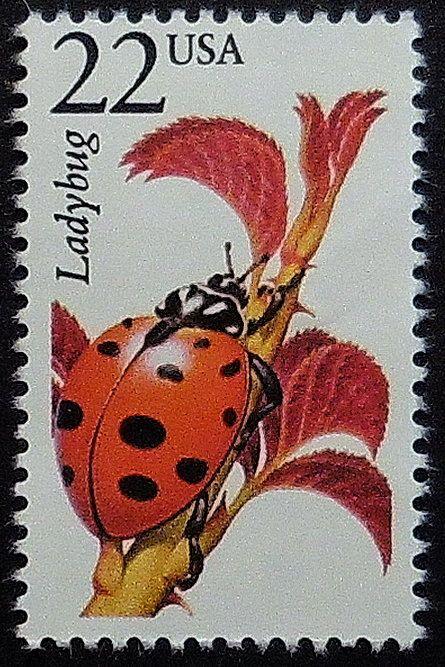 Ladybug USA Picnic Postage Stamp Art Crafts Collecting Mail