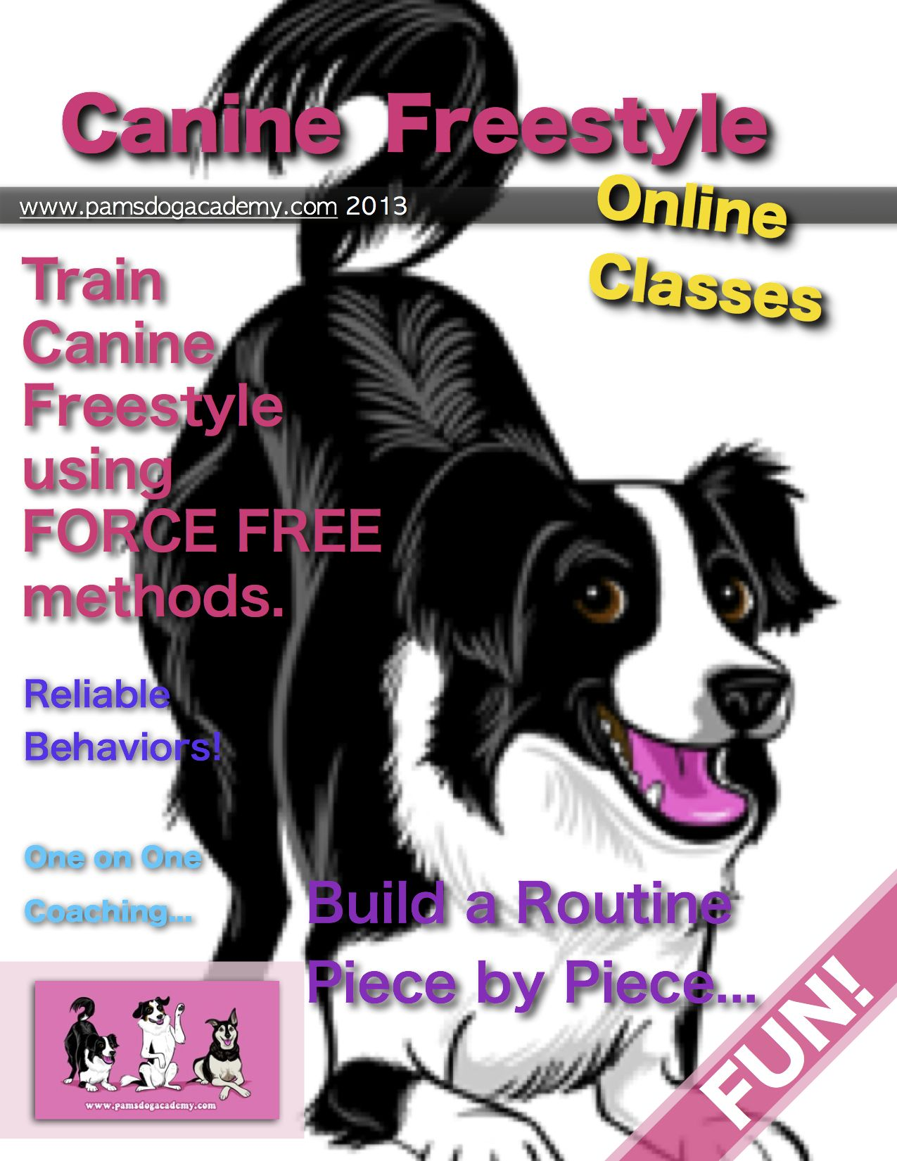 Online Canine Freestyle Clicker Basics Classes Through Pam S Dog