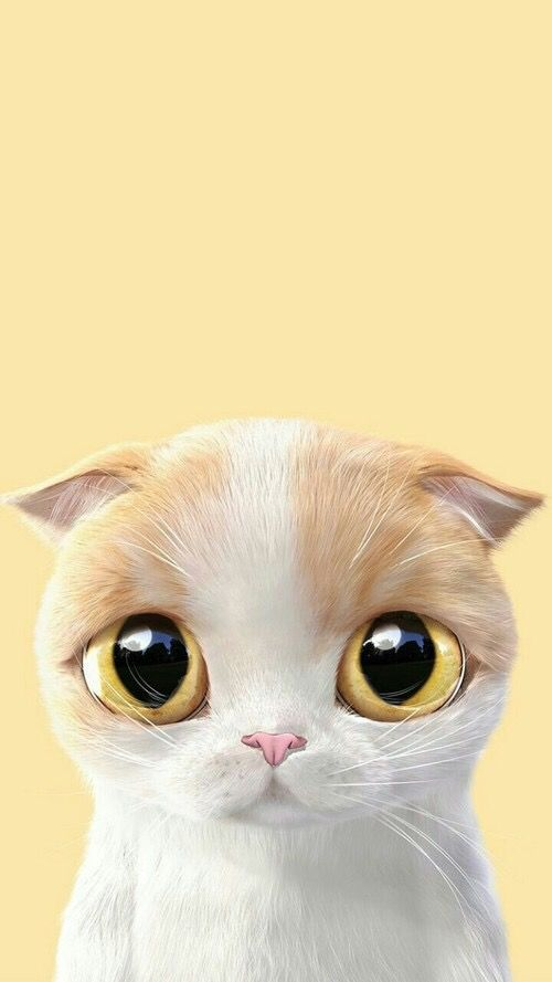Cute Art Iphone Wallpaper Cat Best Wallpapers