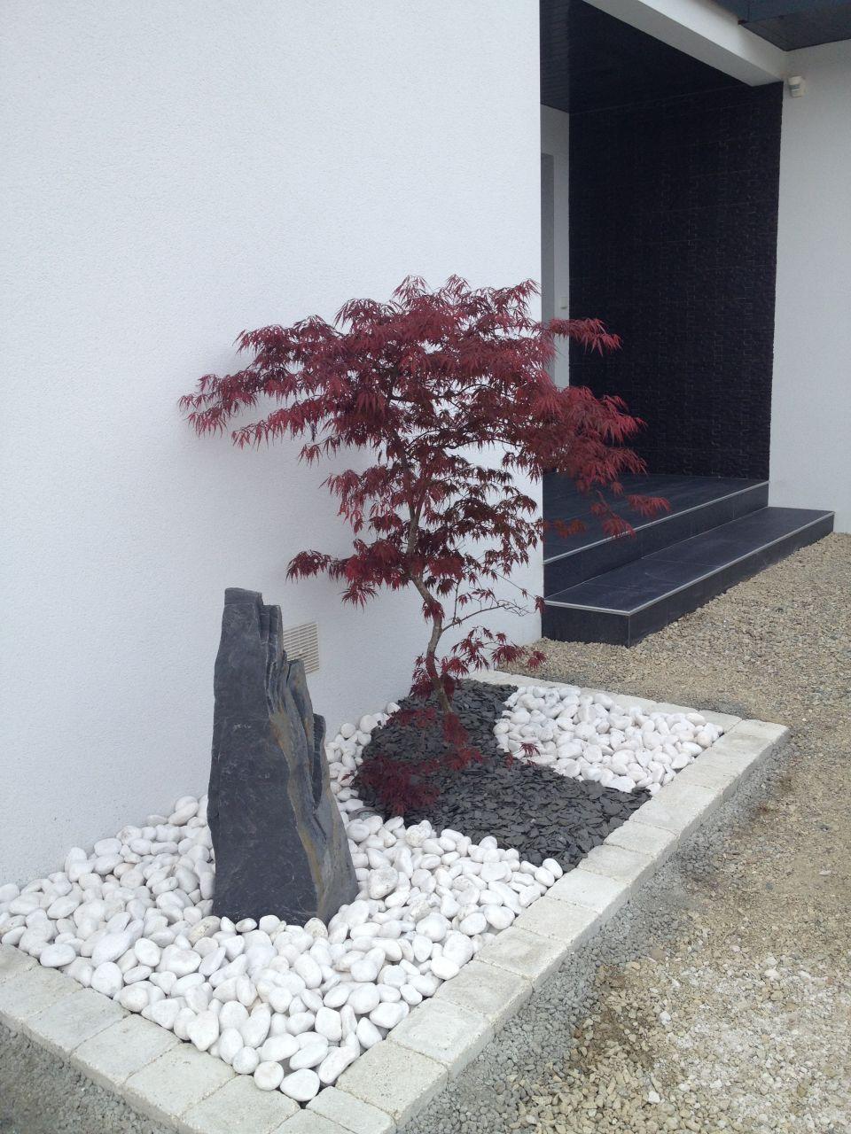 Photo erable japonais avec son monolythe entree - Comment tailler un bougainvillier ...