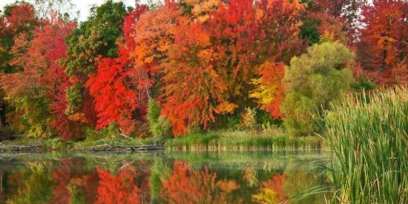 Stunning Fall Scenery: Northern Wisconsin #fallscenery
