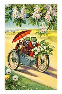 Frog Hopper Glen: Vintage Frog Illustrations