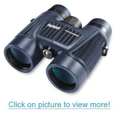Bushnell H2o 10x42 Waterproof Fogproof Binocular W Roof Prism Bushnell Binoculars