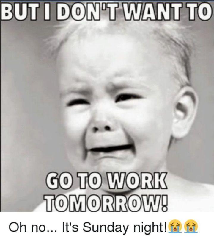 27 Funny Sunday Memes No More Funny Sunday Memes Its Back To Work Tomorrow