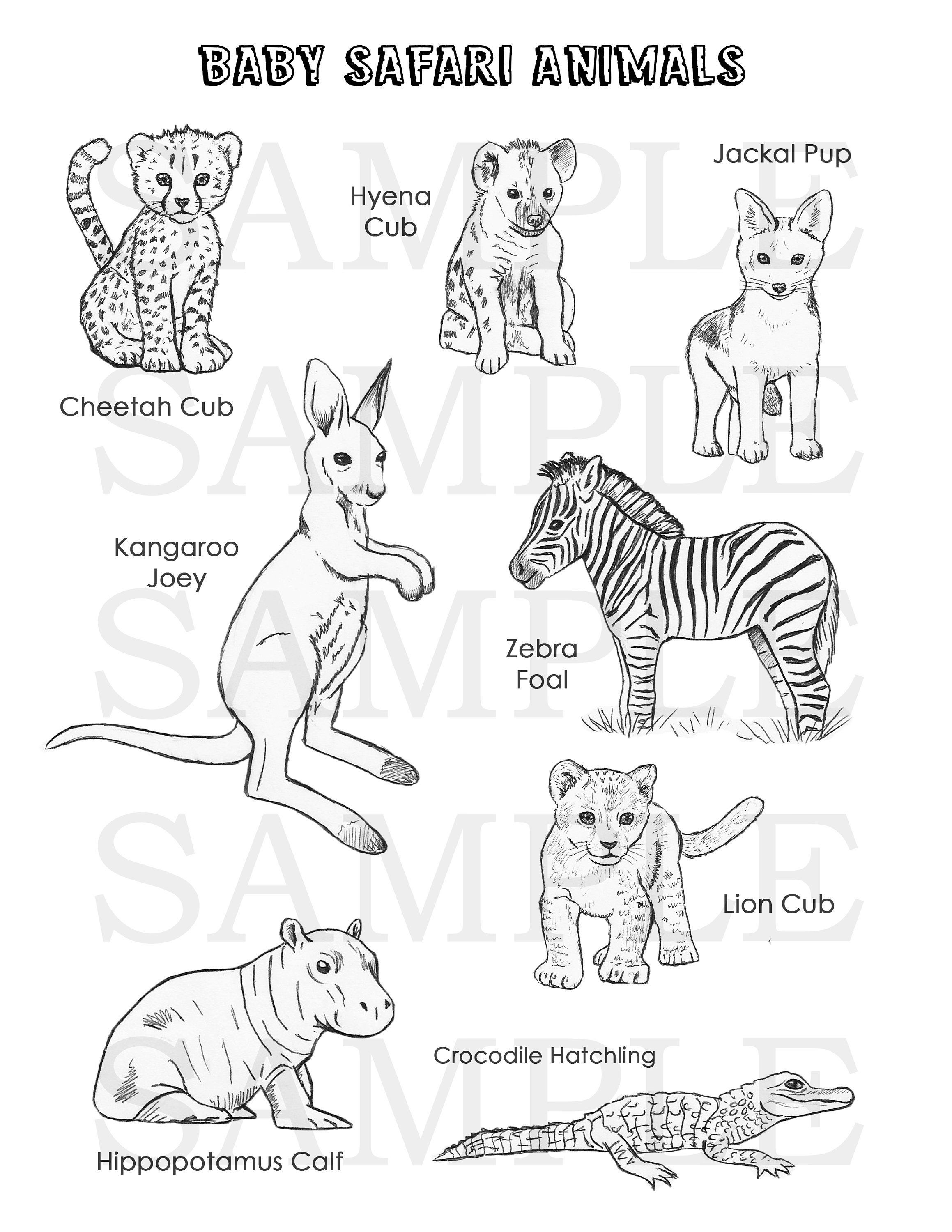 Baby Safari Animals Coloring Page With Images Safari Animals