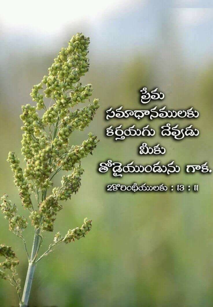 2 Coranthians 13 11 In 2020 Bible Quotes Telugu Bible Quotes Bible Qoutes
