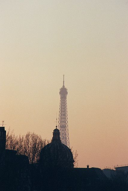 Paris Pollution at dusk and the Eiffel Tower | by paspog
