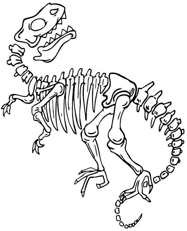 Ausmalbilder Dinosaurier Skelett   Kinder Ausmalbilder