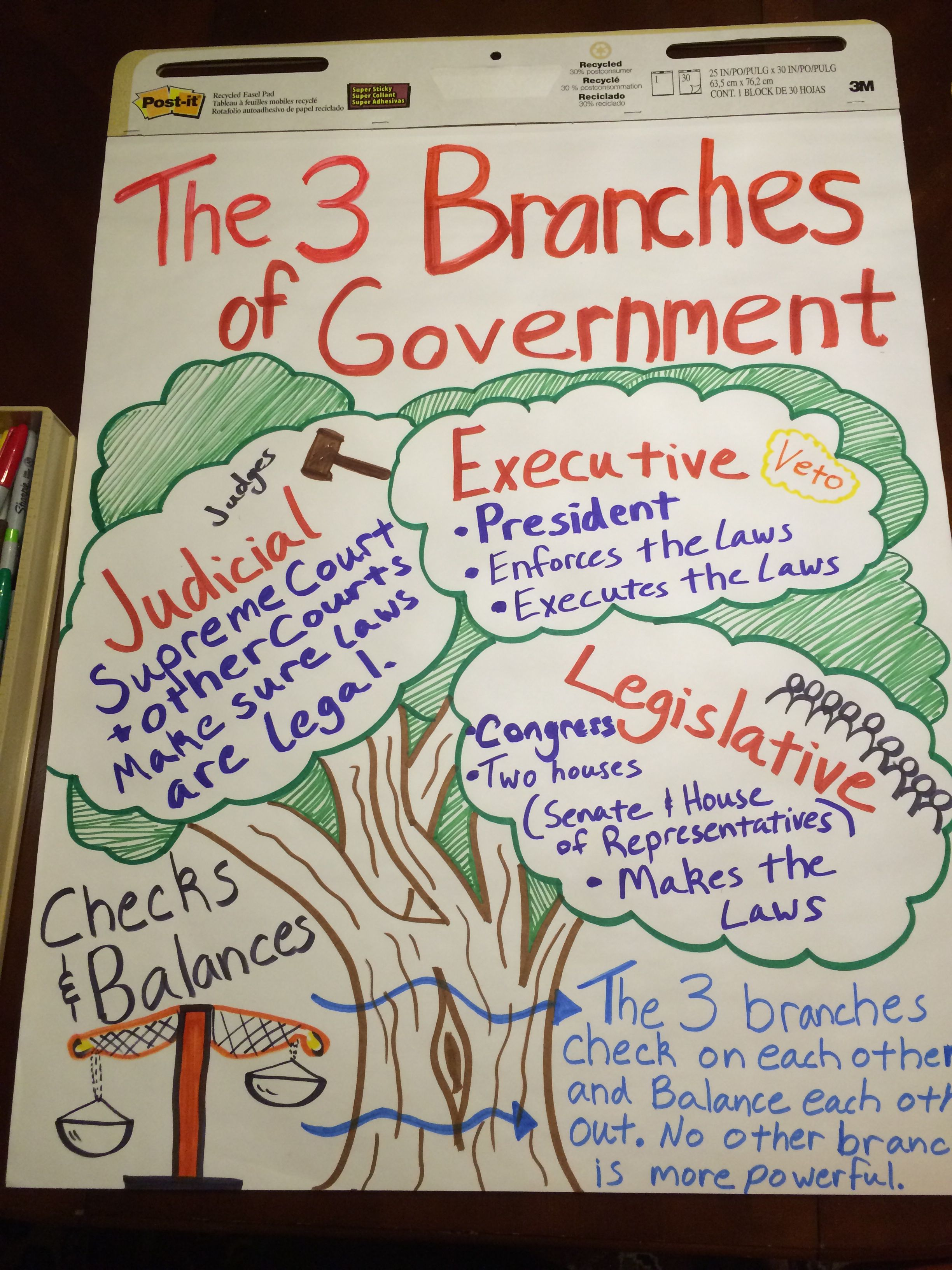 Anchor Chart For The Branches Of Government