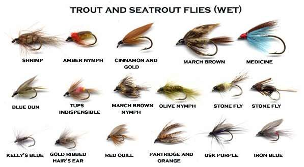 The usk valley walk fishing pinterest trout fly for Types of fly fishing flies