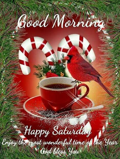 Pin by teresa yarbrough on december greetings pinterest saturday quotes saturday saturday sunday morning greetings quotes good morning quotes christmas quotes christmas greetings christmas cards m4hsunfo