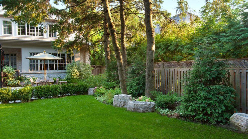 pine trees backyard landscaping