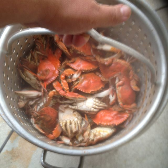 Crabs are fun to have when there in a pot