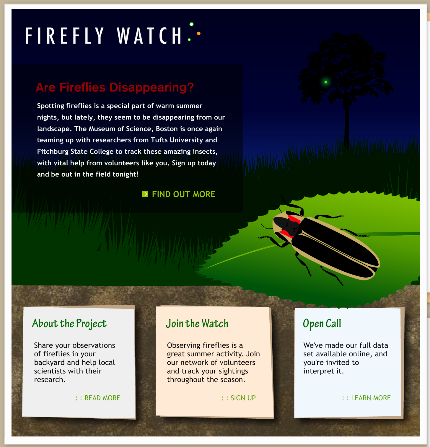 Firefly Watch Put This On Your List Of Summer Activities