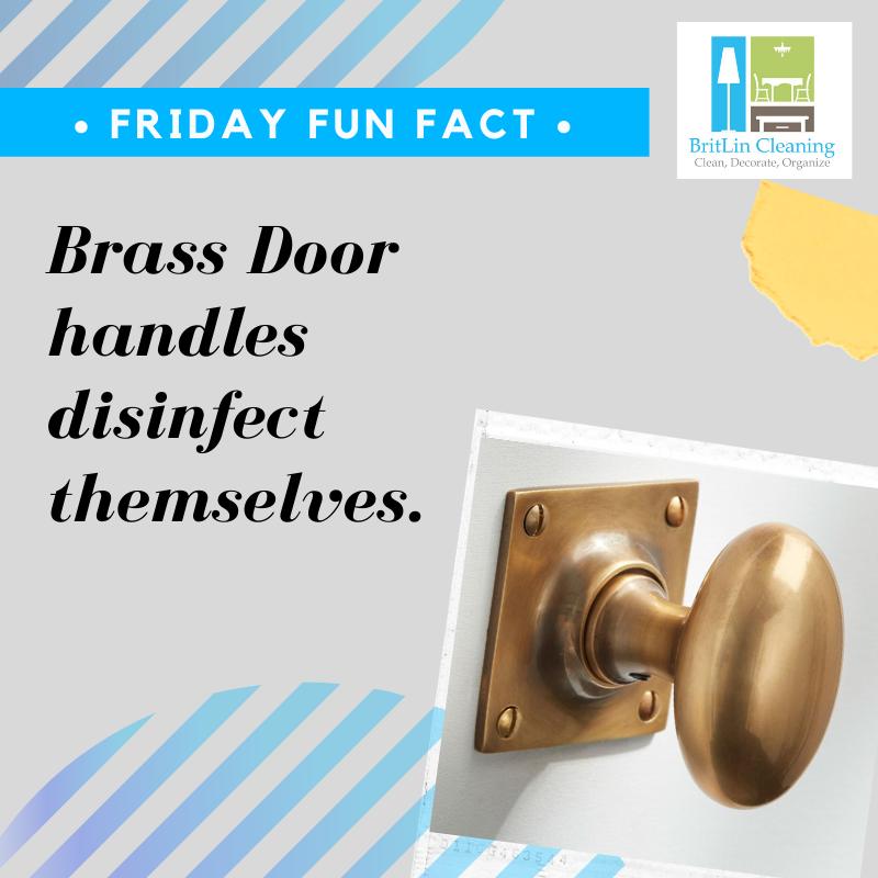 Pin On Britlin Fun Facts