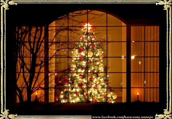 Beautiful Window View Christmas Tree Unique Holiday Greetings Holiday Decor