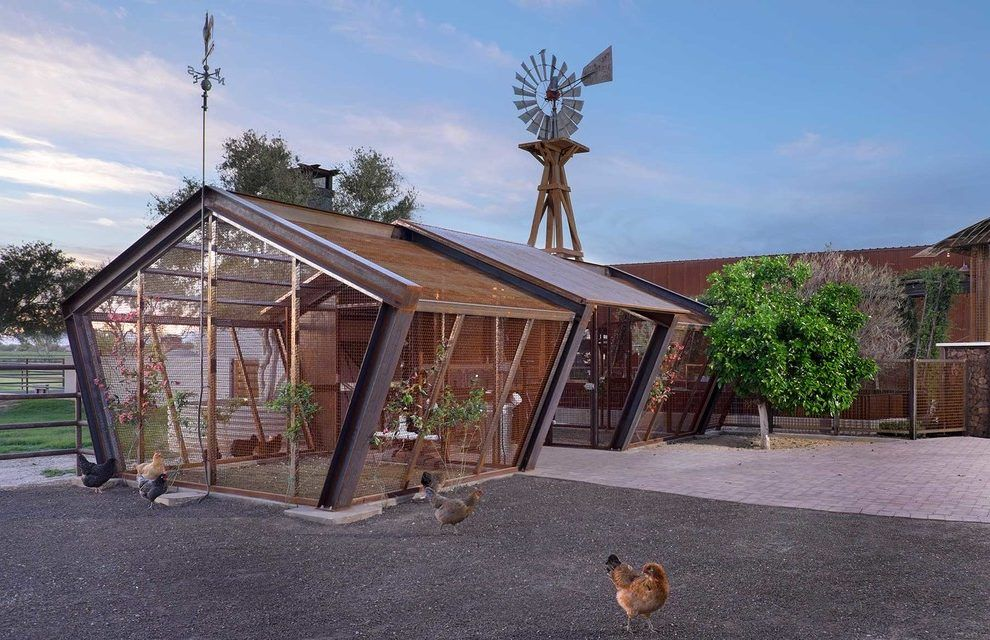 rustic chicken coop shed contemporary with industrial