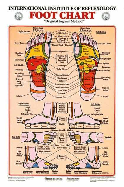graphic regarding Printable Reflexology Foot Chart identified as Absolutely free Printable Reflexology Charts reflexology ear chart