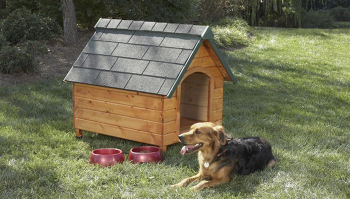 How To Build A Dog House Dog House Plans Dog House Diy Build A Dog House
