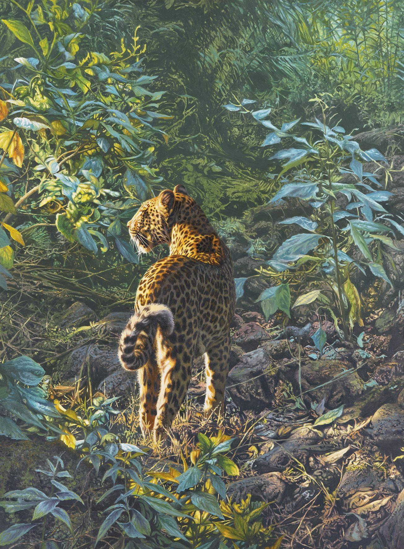 Paul Augustinus Jungle #leopard Wildlife Art In 2019 Paintings Big