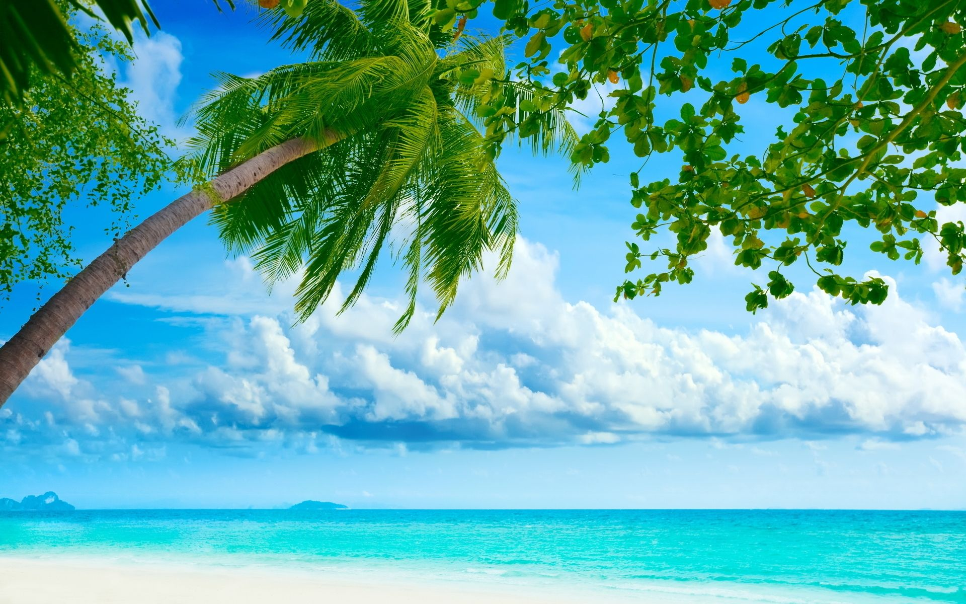 Make Bing Picture My Background beach desktop wallpapers