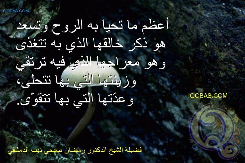 فضيلة الشيخ الدكتور رمضان صبحي ديب الدمشقي Qobas Quotes Movie Posters Poster