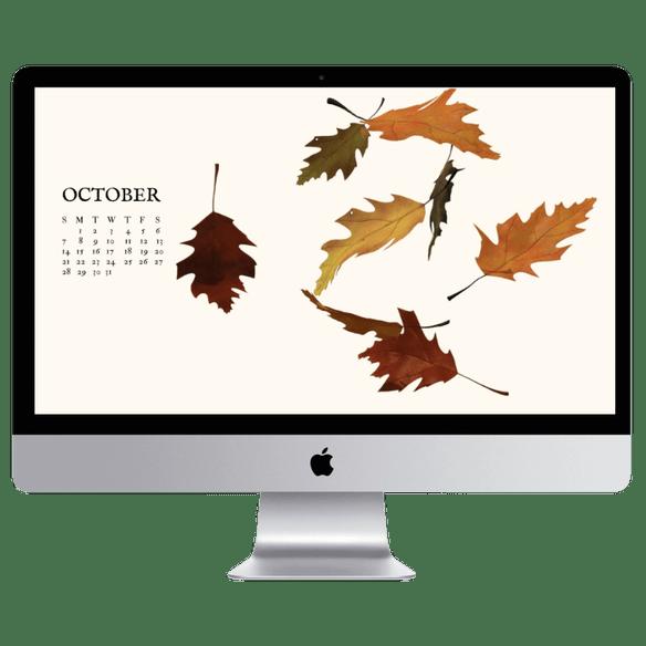 Free Fall Desktop Wallpapers Fall Screensavers 100 Things 2 Do Fall Wallpaper Desktop Wallpaper Fall Wallpaper Iphone Christmas