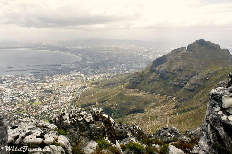 Photoblog: Views from the Top of Table Mountain, Cape Town www.wildjunket.com