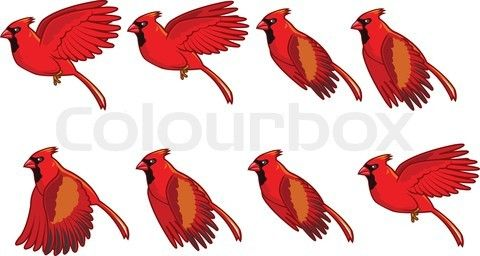 Vector Of Cardinal Bird Flying Animation Sprite On Colourbox