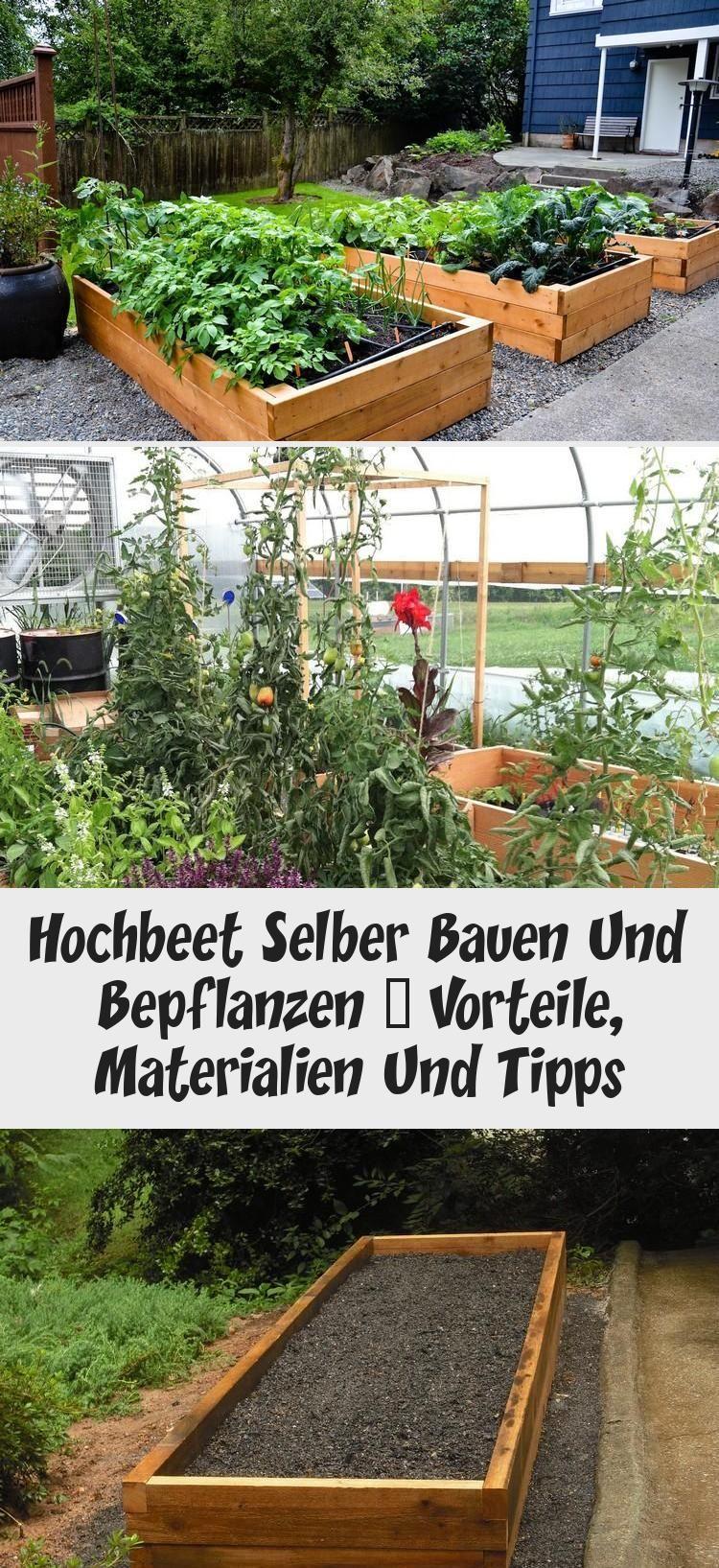 Garten Hochbeet Selber Bauen Und Bepflanzen Vorteile Materialien Und Tipps Hochbeet Selber Bauen Und Bepflanzen Vorteile Materialie In 2020 Plants Garden