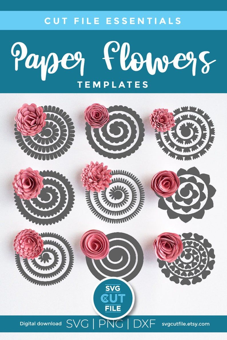 Rolled Flowers : rolled, flowers, Flower, Making