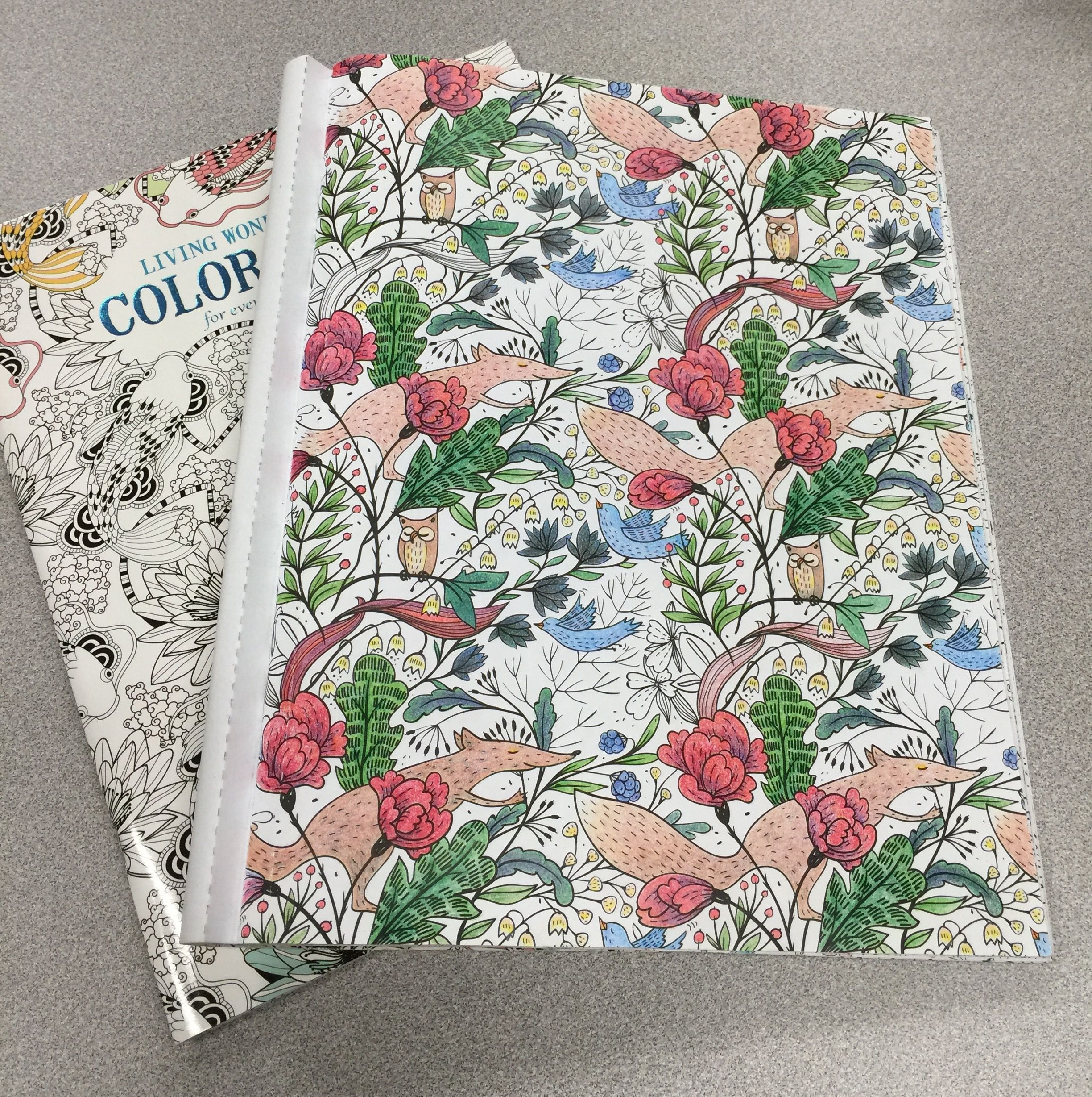Color art floral wonders - Trying To Complete Some Pages Out Of My Various Books I Nicknamed This Page Woodland Creatures It S From Living Wonders Color Art For Everyone