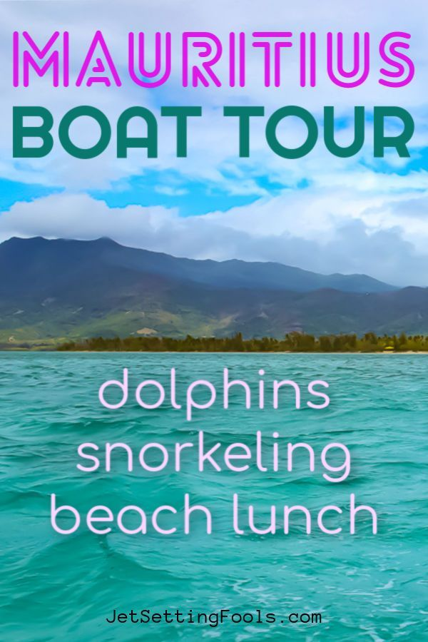 Swimming With Dolphins In Mauritius - Jetsetting Fools