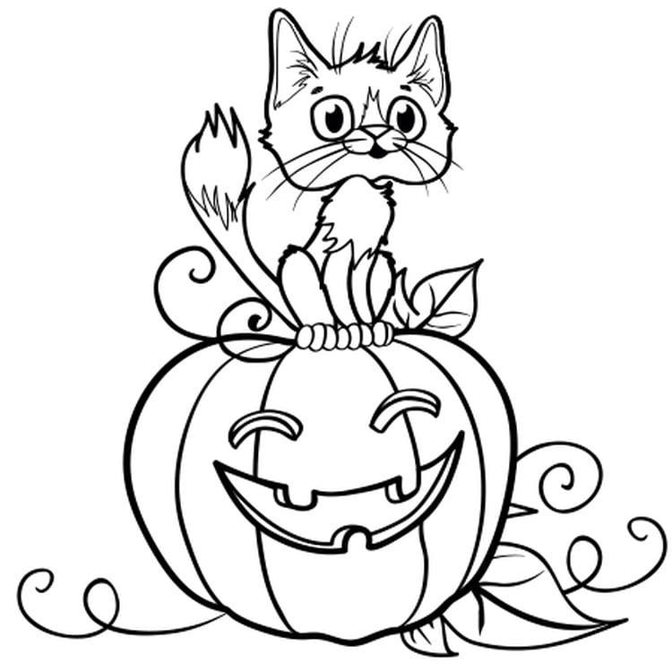 Citrouille D Halloween Dessin