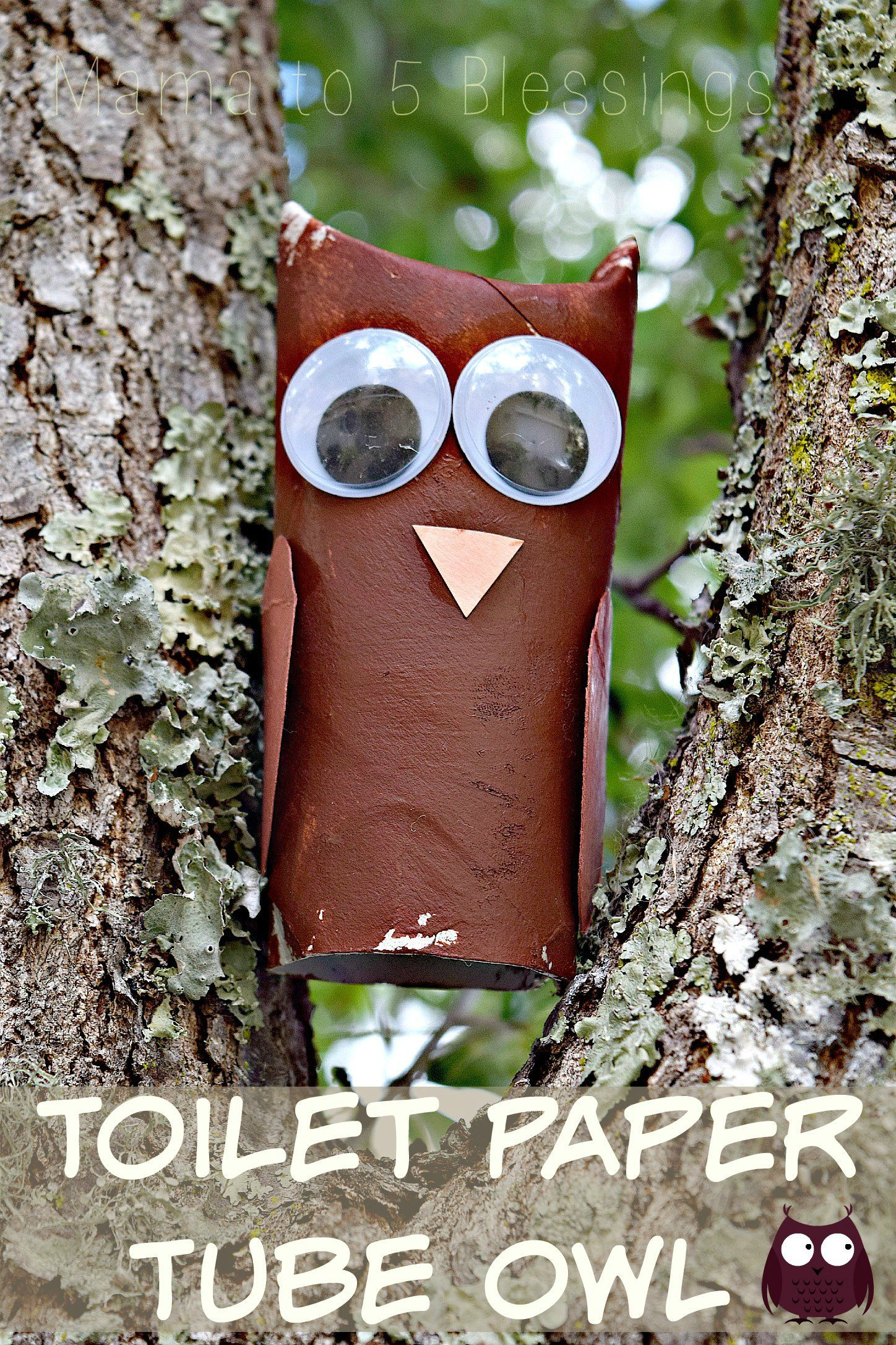 Toilet paper tube owl. Super easy craft to make with kids plus it is great for Earth Day as the main part of the owl is made from a recycled item! http://mamato5blessings.com/2015/04/toilet-paper-tube-owl-kids-craft-linky/