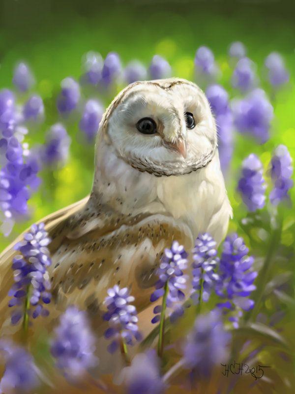 фото совы с цветами камни синего