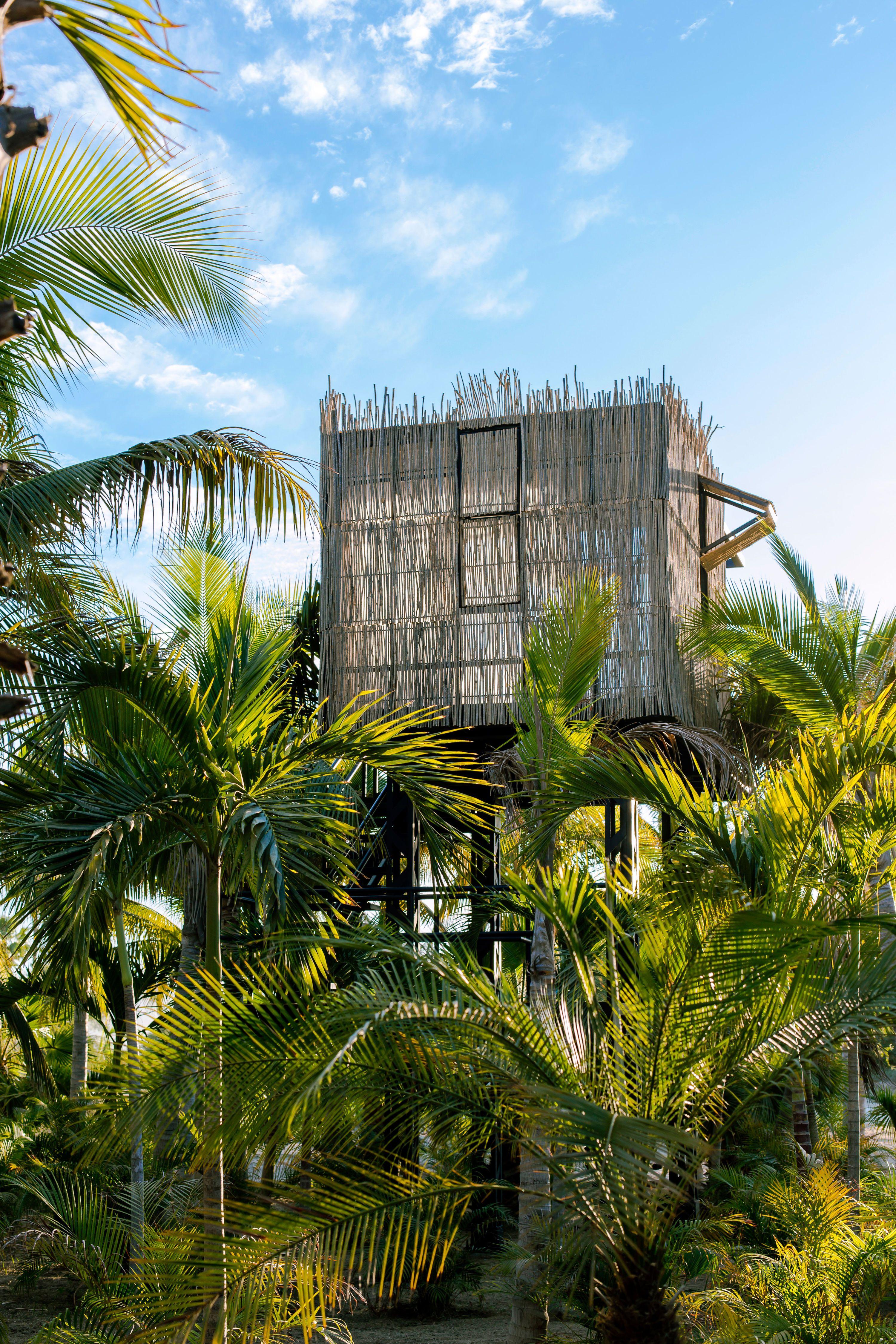 Acre resort treehouse baja tree house tree house