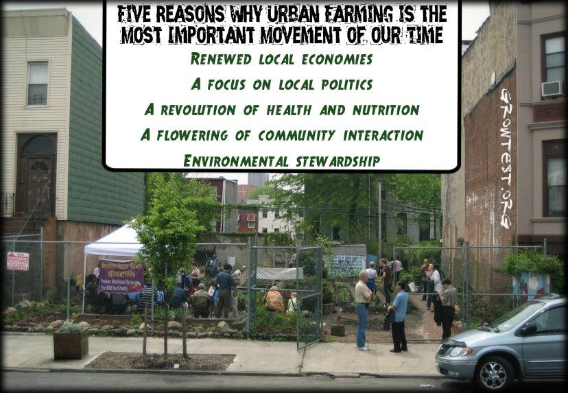 Five Reasons Why Urban Farming Is The Most Important