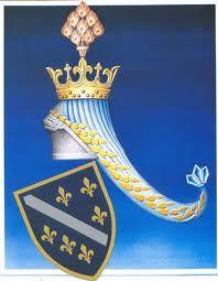 Pin By Silvana Mondo On A Bosnian Lily Bosnian Flag Coat Of Arms Beautiful Waterfalls