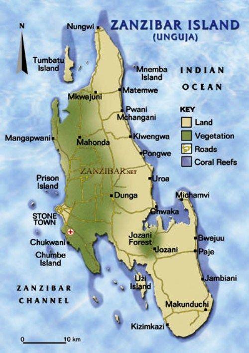 Zanzibar Beaches are Exotic and Tropical Africa Beach and Tanzania