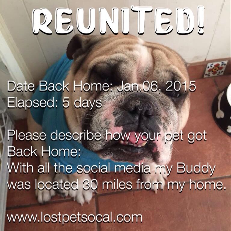 #REUNITED #DOG Welcome home, Buddy! Date Back Home: Jan.06, 2015 Elapsed: 5 days  Please describe how your pet got Back Home: With all the social media my Buddy was located 30 miles from my home.