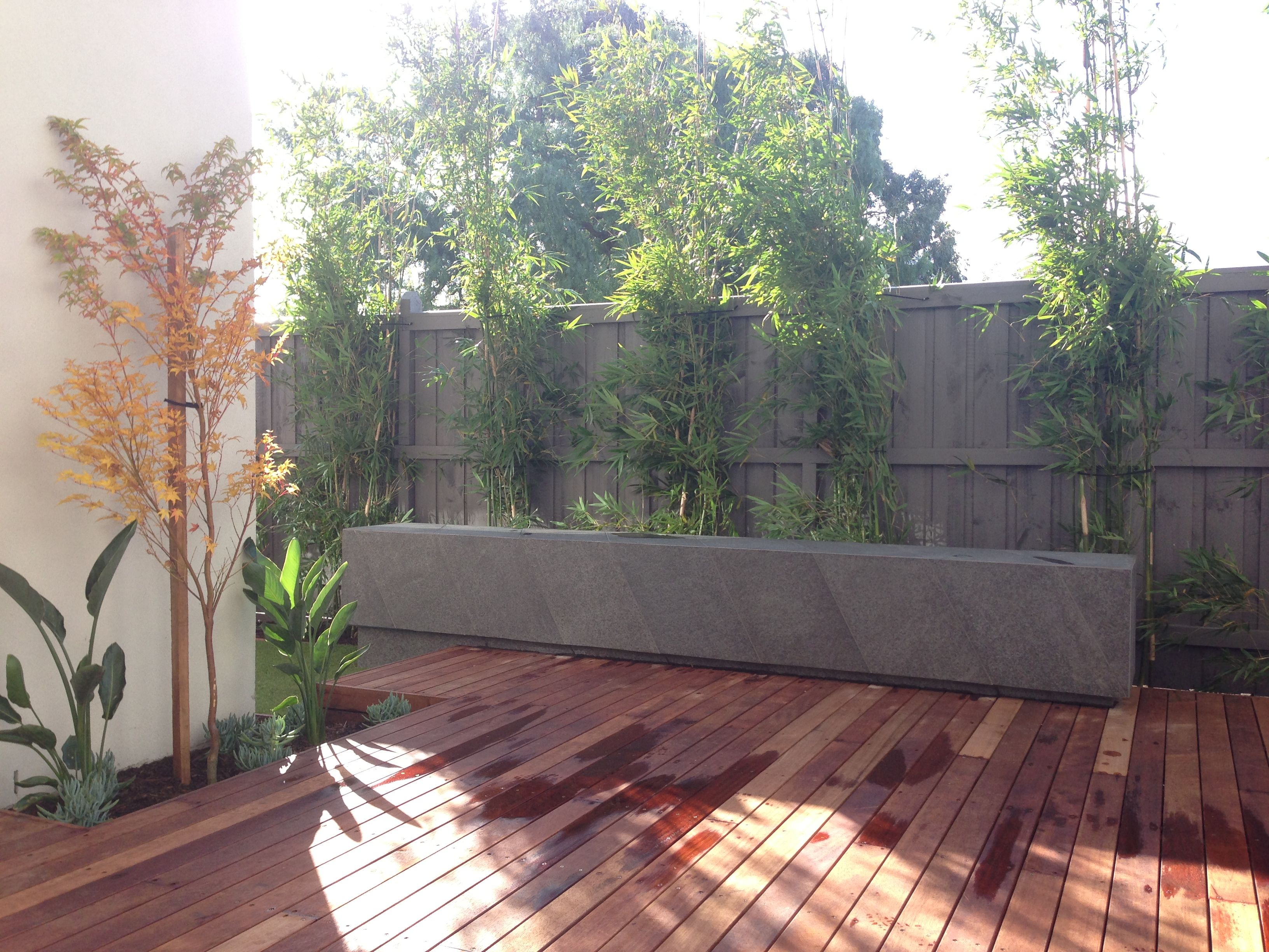 Mark Travers Architect: Courtyard Bluestone Bench With Bamboo Screen Planting And