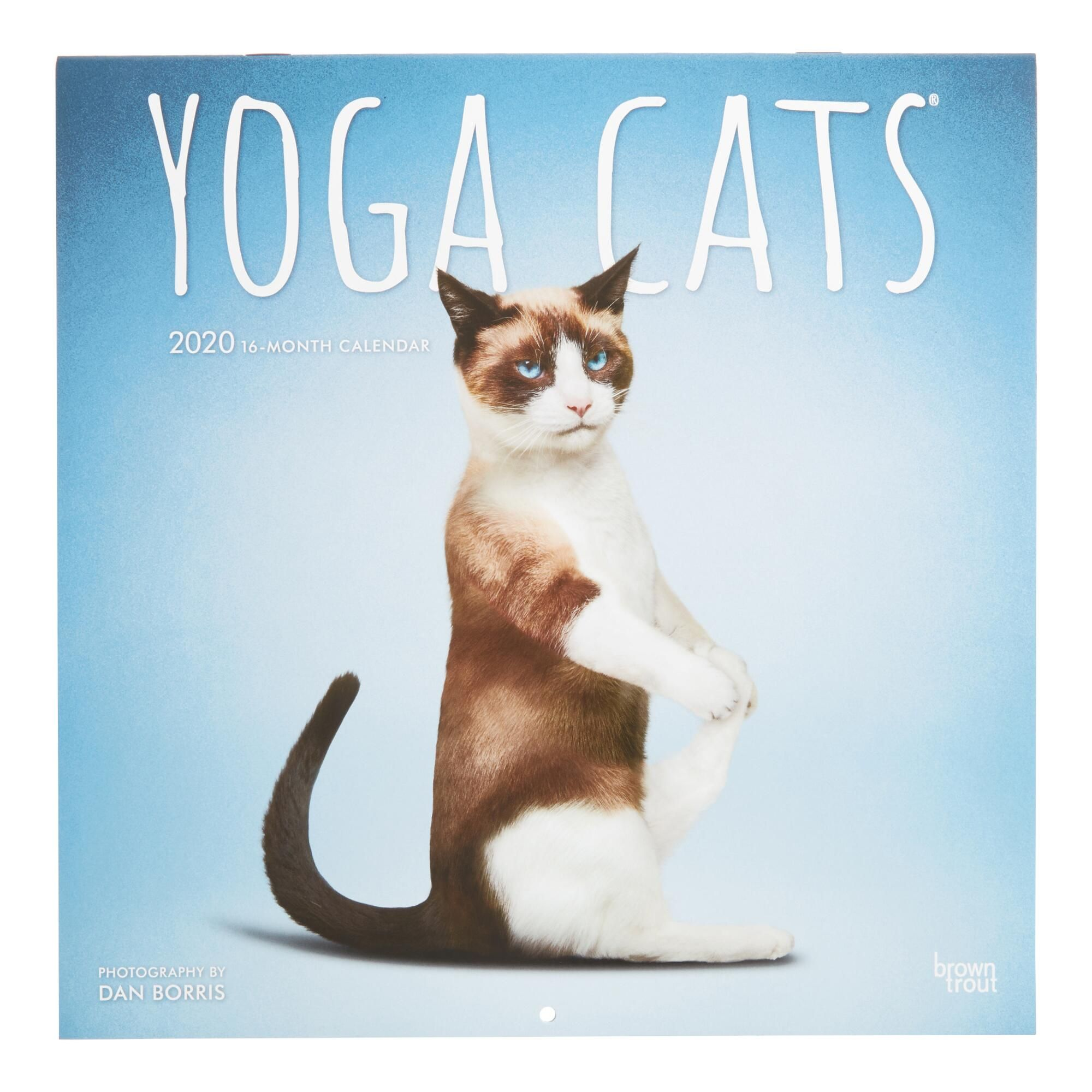 Yoga Cats 2020 Wall Calendar By World Market Cat Yoga Cat Calendar Cats