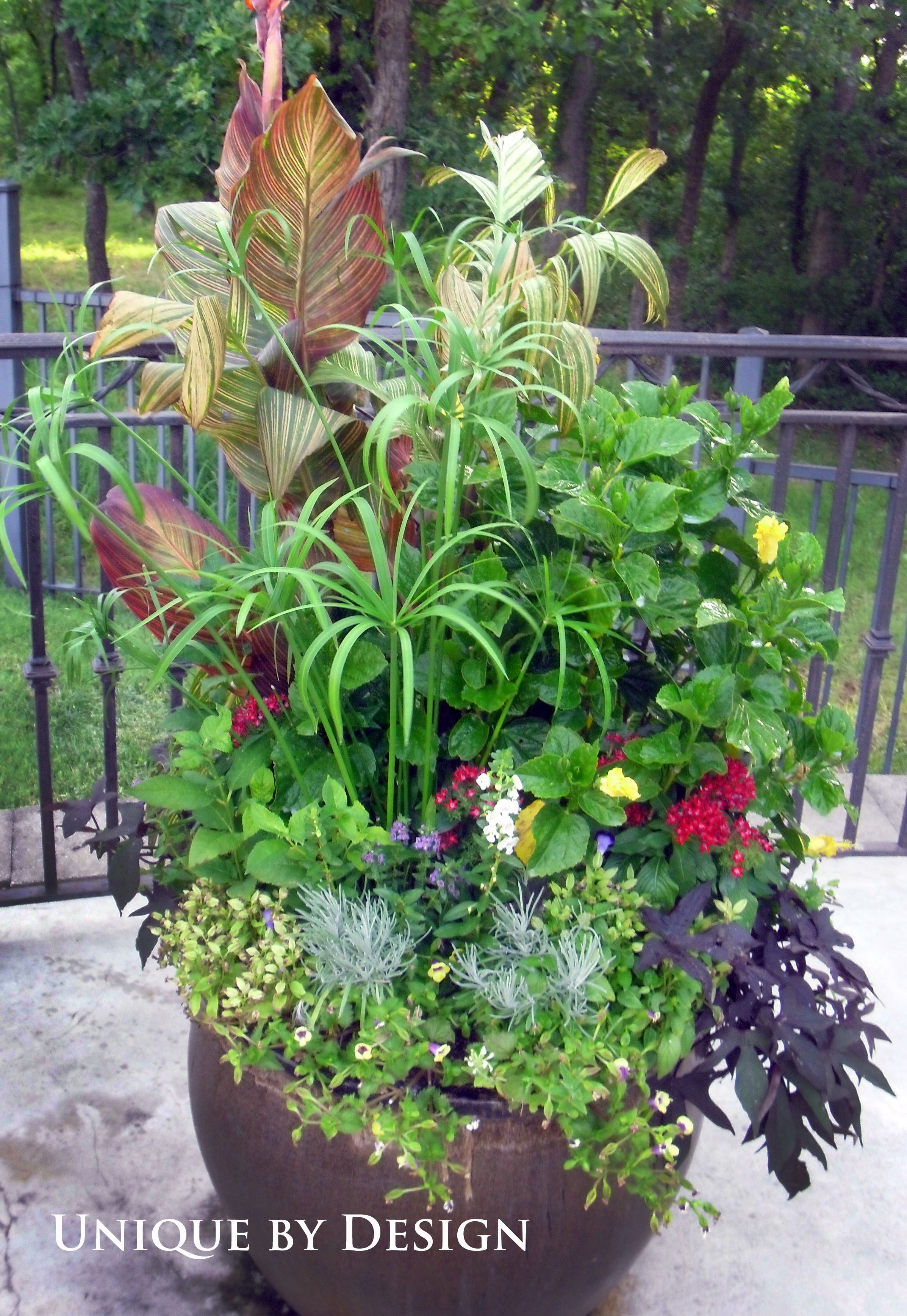 Container gardening landscape design landscape for Container gardening ideas