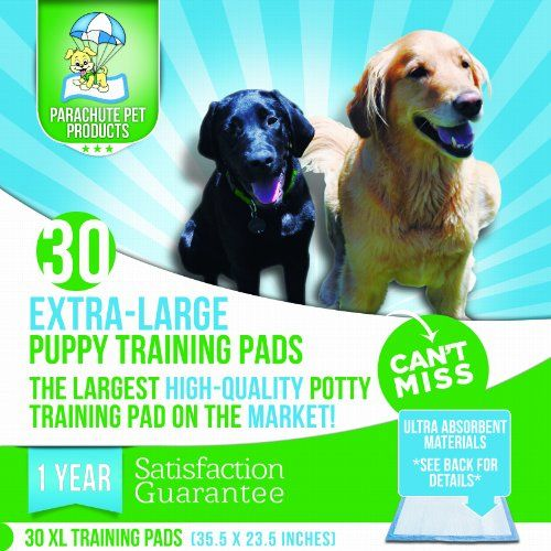 Pin By Janek Szyman On Pet Supplies Puppy Pads Training Pads