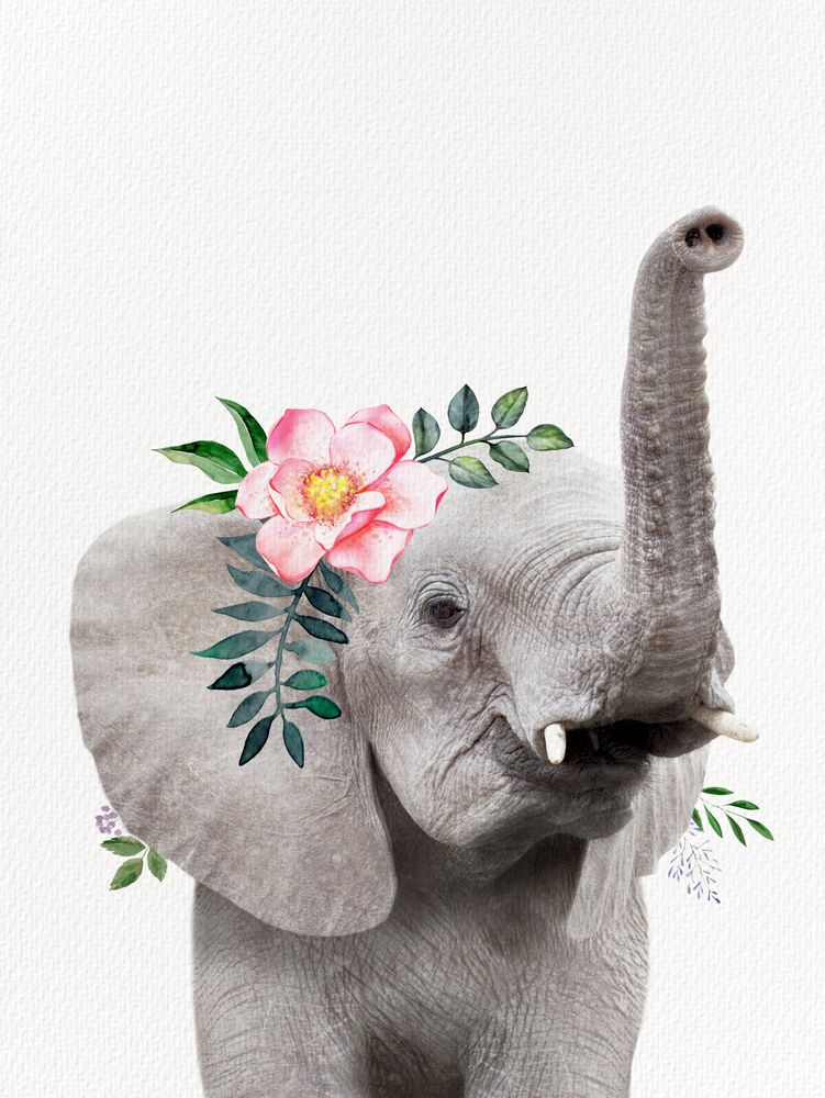 Baby Elephant With Flower Crown Laptop Ipad Skin By Amy Peterson Art Studioa C 13 Macbook Pro Air Elephant Wallpaper Baby Elephant Elephant
