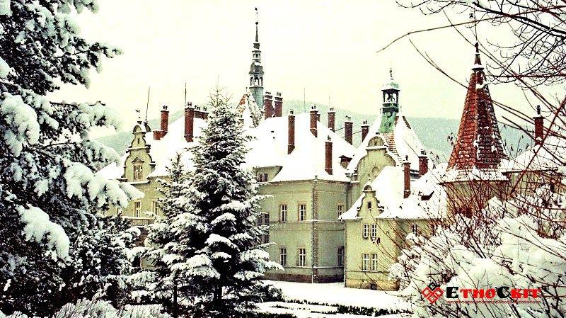 Картинки по запросу шенборна зимой