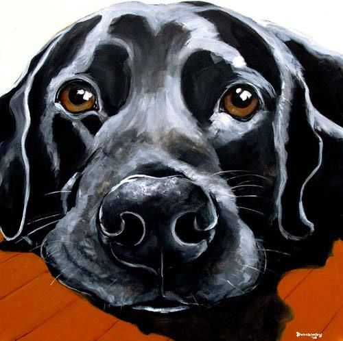 Pin by Dog Breeds on AAA Dog Portraits in 2019 | Dog ...