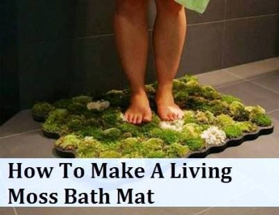 How To Make A Living Moss Bath Mat Health Natural Living With
